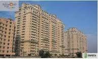 Regency Park 3 BHK Flat For Rent In Gurgaon