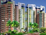 2 Bhk Apartment For Rent In Pearl City