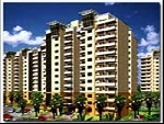 Central Park-1, 3bhk Flat For Rent In Golf Course Road Gurgaon